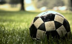 balon de futbol, hierba 165931